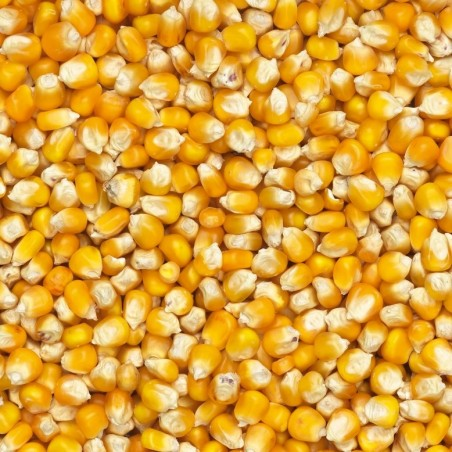 """Maize French Cribs 25kg """"V-LAGA"""""""