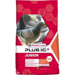 Junior Plus I.C. 20kg