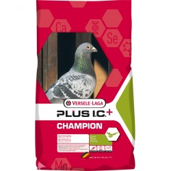 Champion Plus I.C. 20kg