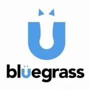 BlueGrass Horse Feed