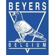 Beyers Pigeon Food