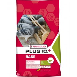 Base Plus I.C. 20kg