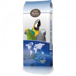 DELI NATURE - 64 - Parrots...