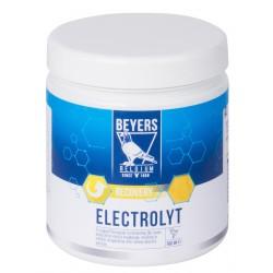 BEYERS - Elektrolyt - 500g