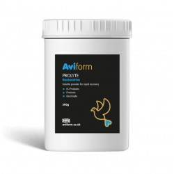 Aviform - Pigeon Prolyte -...
