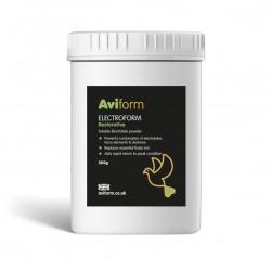 Aviform - Pigeon...