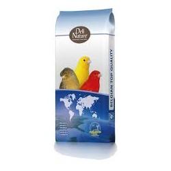 DELI NATURE - 53 - Canaries...