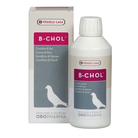 Versele-Laga Oropharma - B-Chol - 500ml