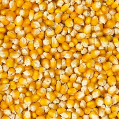 BEATTIEs - Maize French Cribbs Yellow - 20kg