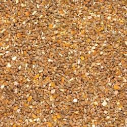 BEATTIE's - Mixed Grain