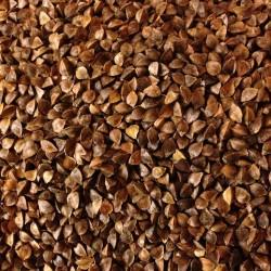 "Buckwheat 20kg ""V-LAGA"""