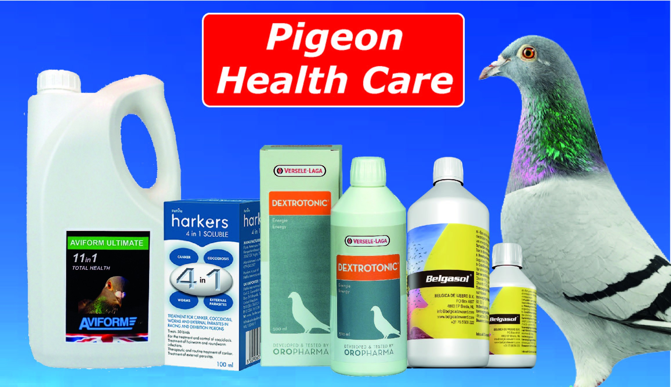 Pigeon Supplements